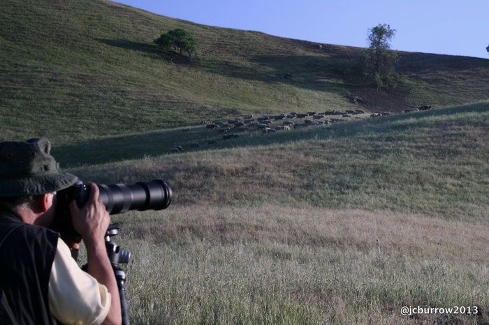 Capture Wayne by James Burrow on Capture Kern County // Capture of Wayne shooting one of his many famous shots. This was taken on the Trip at Wind Wolves Preserve.