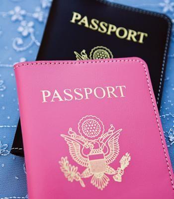 Perfect destination passport covers!