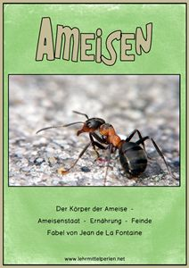Best Ameisen Ampelheft Gr n
