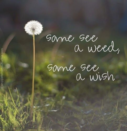 Perspective and positive mental attitude make all the difference in the world.