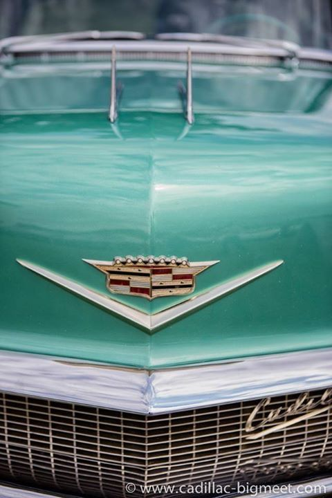 10 best my style images on pinterest cadillac eldorado autos and cars 1956 cadillac eldorado seville fandeluxe Images