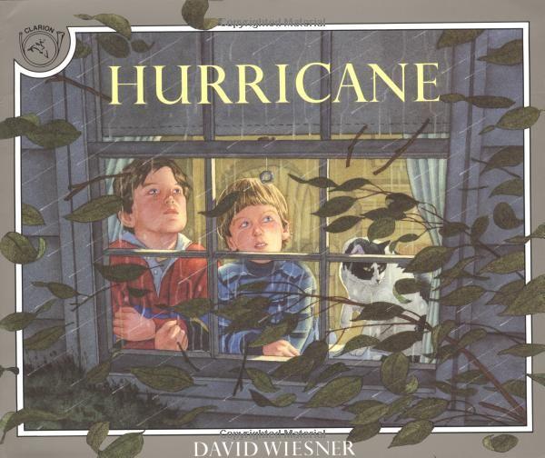 Hurricane: Amazon.co.uk: David Wiesner: 9780395629741: Books
