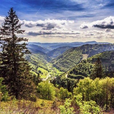 Entspannter Wellnessurlaub im Schwarzwald   Urlaubsheld.de