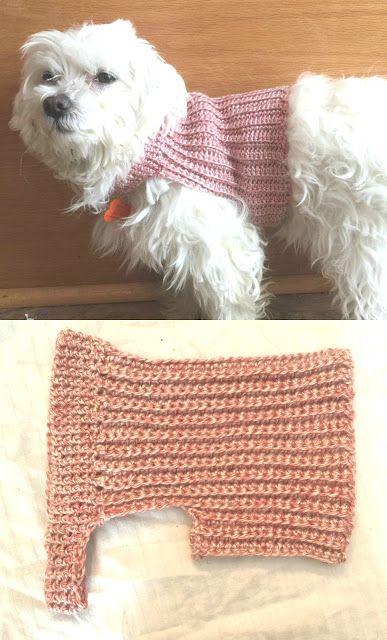 Camisola do cão do crochet de DIY