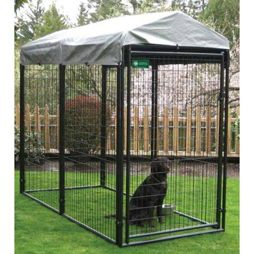 28 best images about dog enclosures on pinterest safety for Breeding kennel designs