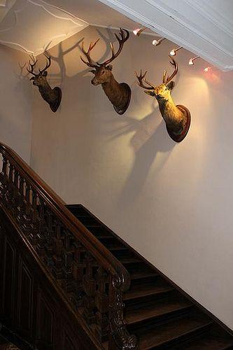 Chateau de Lavaux-Sainte-Anne: For The Home, De Lavaux Sainte Anne, Decor Ideas, Chateaus, Cute Ideas, Living Room, Deer Head, Logs Cabins Home, Castle