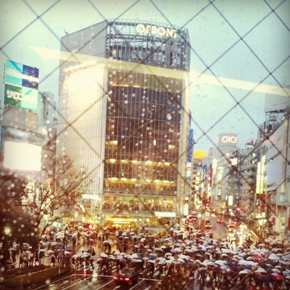 Shibuya Crossing by Hello Sandwich