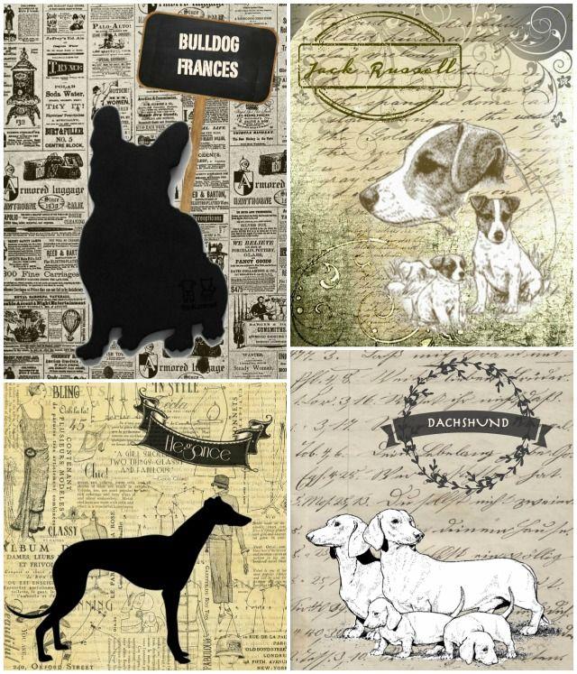 Láminas vintage de perros.