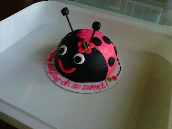 1st Birthday Ladybug Smash Cake