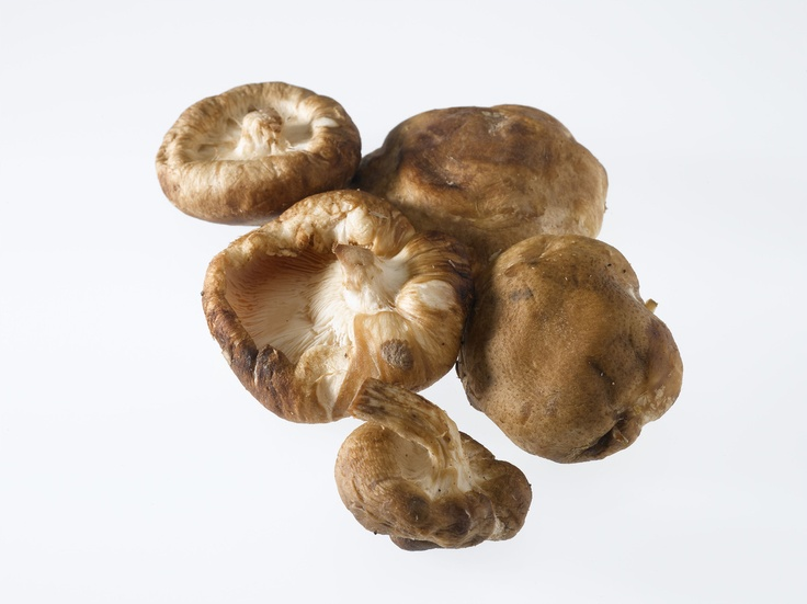 best Foods to eat RAW vrs Cooked ~~ COOKED: Shitake Mushrooms:    Mushrooms are often enjoyed cooked and they are an excellent source of B vitamins, minerals and dietary fiber. To maximize their flavor and maximize their nutrients, just lightly sauté for a few minutes on medium heat.