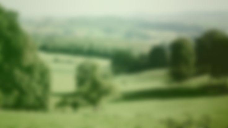 Réservation   Le Vert Mont