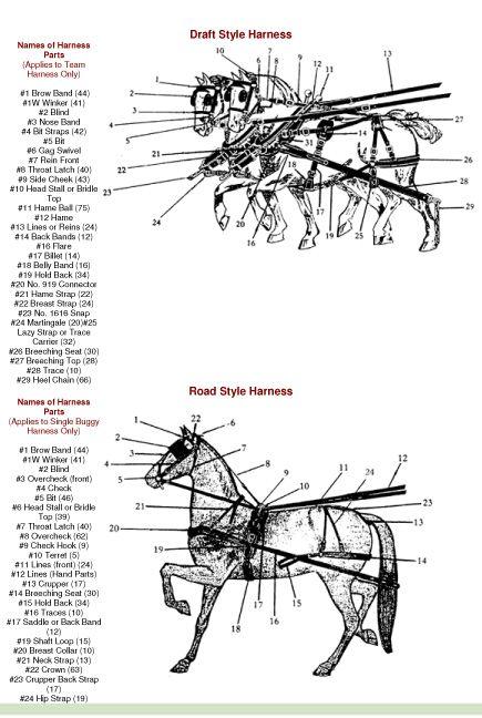 driving harness diagram