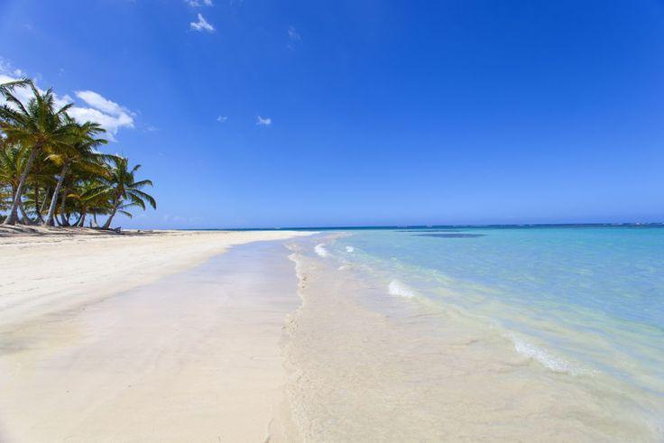 Más allá de los grandes centros turísticos como Punta Cana, la República Dominicana atesora espacios naturales como el parque nacional de Los Haitises, al sur de la península de Samaná, o la extensa playa de Las Terrenas (en la foto), un arenal de 15 kilómetros flanqueado de palmeras entre Puerto Plata y Punta Cana. Temperatura media: entre 24º y 29º. Logitravel (www.logitravel.com) ofrece combinados de vuelo más hotel en Las Terrenas desde 634 euros por persona.