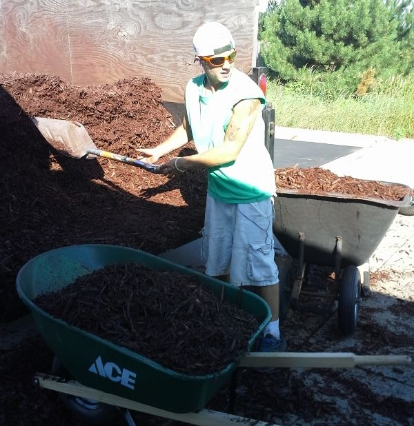 My son Adam installing landscaping mulch for a commercial account in Lake Elmo, MN ringlawncare.com