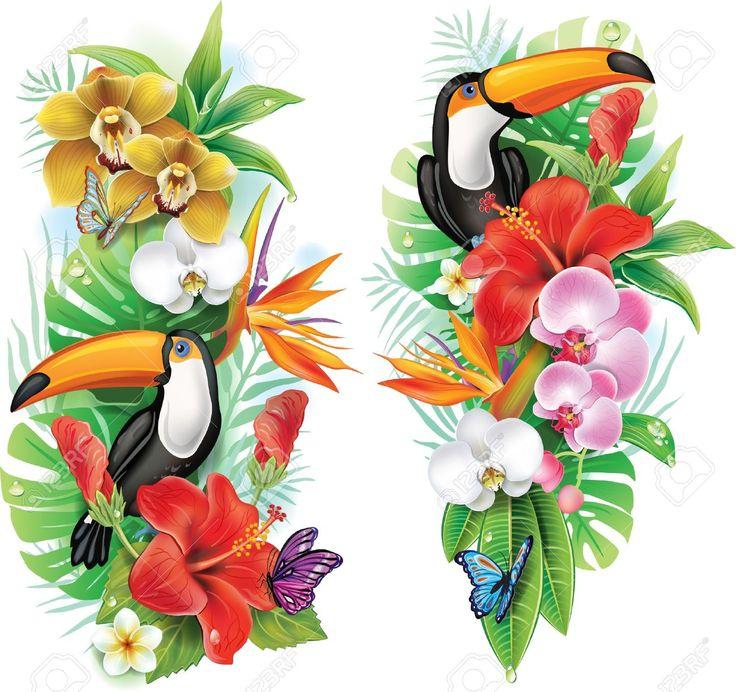 Fleurs Tropicales, Toucan Et Un Papillons Clip Art Libres De Droits , Vecteurs Et Illustration. Pic 21214110.