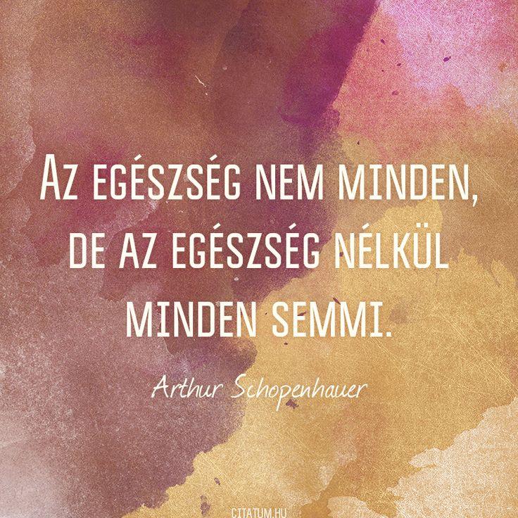 Arthur Schopenhauer idézete az egészségről.