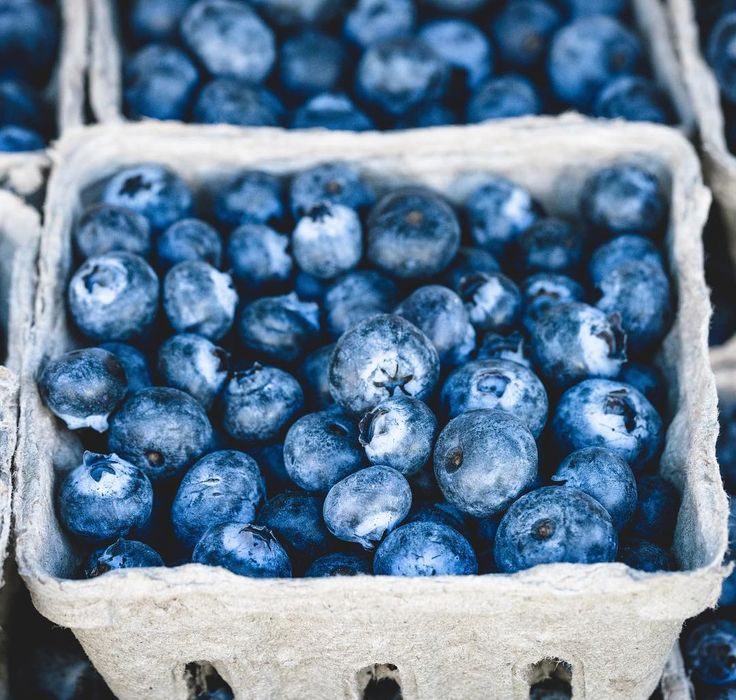 Never enough  #blueberries #health #eco #ecofriendly #sustainableliving #harvest #fruit #food #instafood #yum #tasty #love #beautiful #instalove #instalike #blue #shoploren #vegan #veganleather #veganbags #vegetarian #deliciousfood #brighton #uk