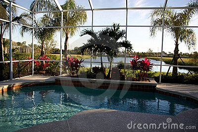 To Landscape Around The Pool Inside And Out   Porches Decks Lanai   Pinterest   Screened Pool ...
