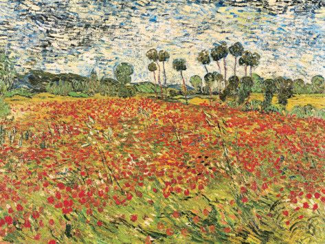 Field of Poppies, Auvers-Sur-Oise, c.1890 Prints by Vincent van Gogh at AllPosters.com $24.99