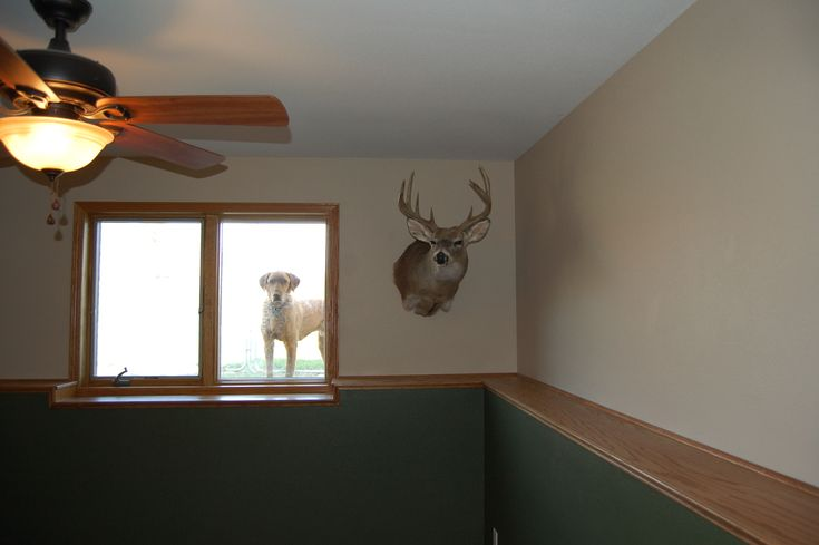 How To Decorate A Half Wall: Basement Ledges Wall