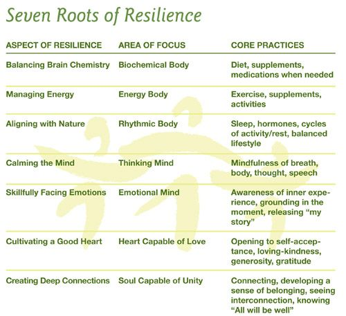 7 Roots of #Resilience | The first three focus upon our physical selves, the body and what it requires to function as it is meant to. They provide the foundation for resilience, like the three legs of a stool, providing a stable platform for cultivating the rest of one's self... The final four roots are reflections of the mind and soul, which comprise our inner selves... living like this will leave little room for unhealthy fear, stress or anxiety.