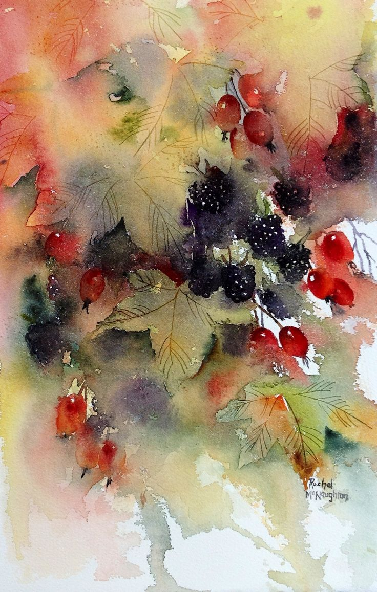 Autumn Berries. Painted in watercolour in a loose style ...