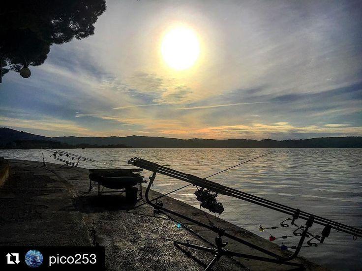 #Repost @pico253  Pescare vuol dire anche questo...! #carpfishing#carpe#carpa#fishing#fishinglife#fishingtrip#carpediem#over#bigfish#picture#pictures#nature#natura#naturpicture#like4like#likeforfollow#likeforlike#like4follow#like4likes#likebac#likes4like#trasimenolake