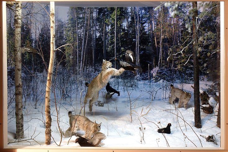 смотреть картинки охота на зверей воротами виднеется