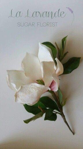 Sugar magnolia. La Lavande sugar florist.