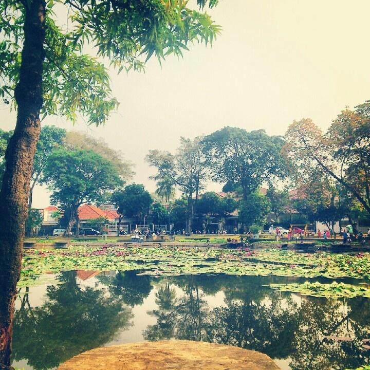 Setu Lembang, a park in Menteng, Jakarta.