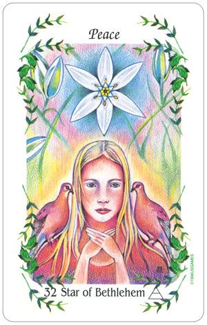 The Flower Speaks :: Tarot...