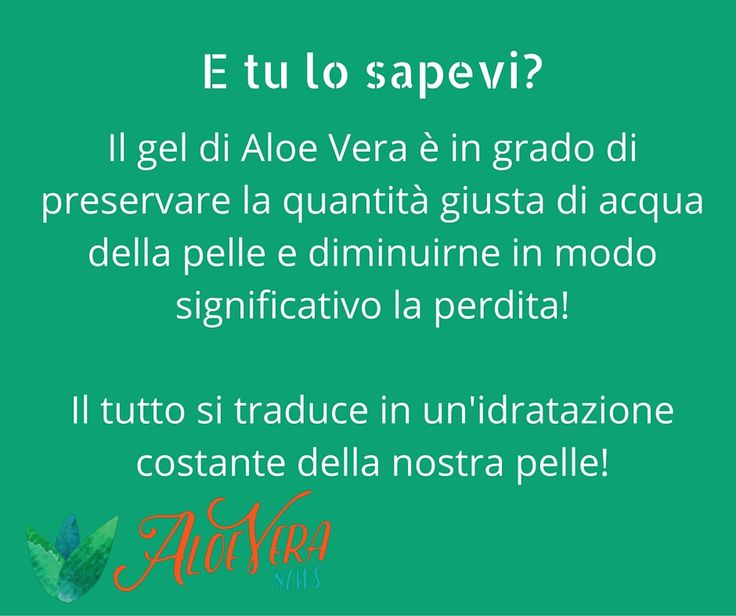 Il gel di Aloe Vera è in grado di preservare la quantità giusta di acqua della pelle e diminuirne in modo significativo la perdita! Il tutto si traduce in un'idratazione costante della nostra pelle!