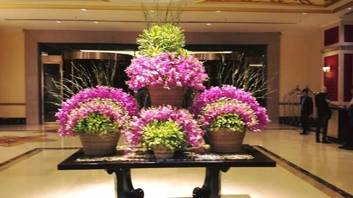 Hot pink Mokara orchids display at Maxims Hotel, Resorts World Manila, Philippines. #lobbyflowers #maxims #RWManila #hotelflowers #winston