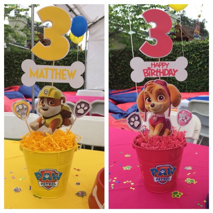 Paw patrol centerpieces  Rubble and Skye