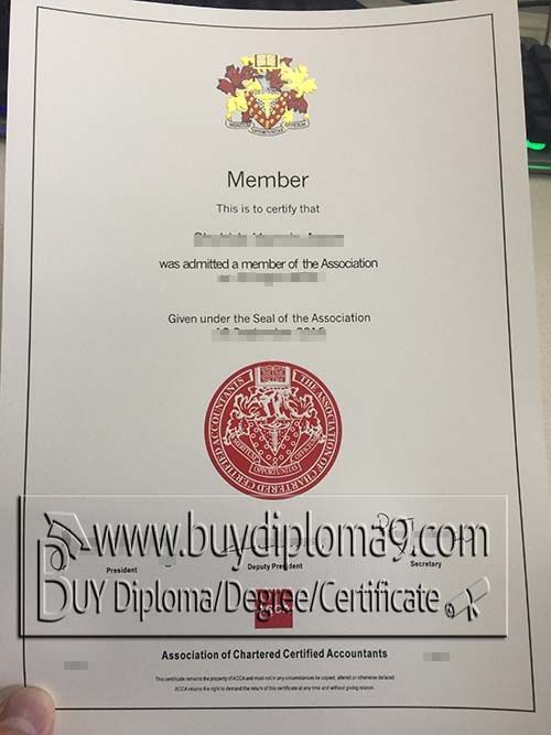 The 25 best university diploma ideas on pinterest monster acca certificate buy diploma buy college diplomabuy university diplomabuy high yelopaper Gallery
