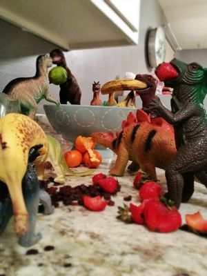 Welcome to Dinovember - Like Elf on the shelf with Dinosaurs, in November.