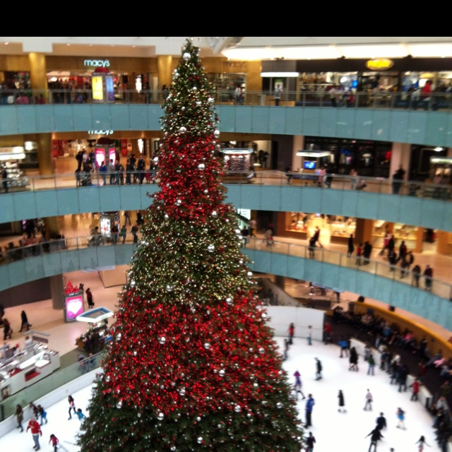 People Ice Skate Under A Giant Christmas Tree At The