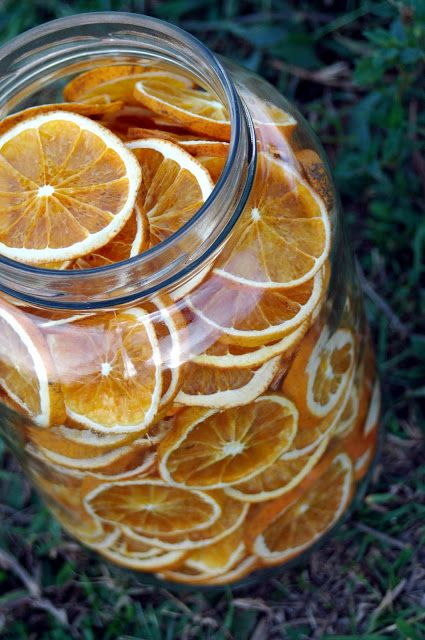 101 Dehydrator Recipes: Dried Orange Chips | Nourishing Treasures