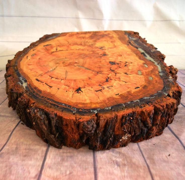 Wedding  Rustic Tree Slab Cake Stand Large - HIRE  - WeddingWish.com.au