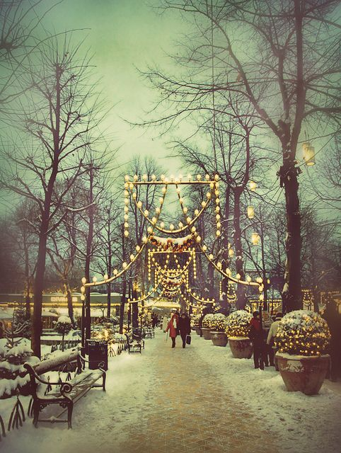 Winter Wonderland Tivoli Garden, Copenhagen, Denmark ★: Christmas Time, Copenhagen Denmark, Winter Wonderland, Christmas Lights, Parks, Holidays, Places, Tivoli Gardens
