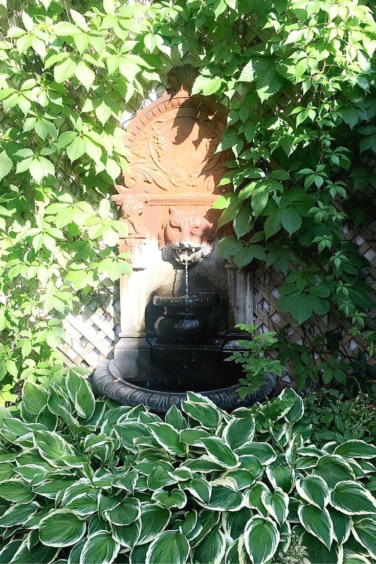 La magnifique cour arrière de notre clinique de Montréal. L'ambiance parfaite pour patienter avec zénitude avant votre rendez-vous. www.skinsmontreal.com