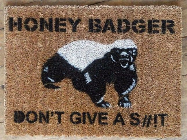 Honey badger dont give a shit - photo#31