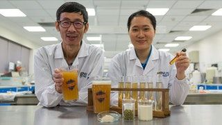"NUS researchers create novel probiotic beer that boosts immunity and improves gut health - ""incorporates the probiotic strain Lactobacillus paracasei L26, which was first isolated from human intestines and has the ability to neutralise toxins and viruses, as well as regulate the immune system."" : Futurology"