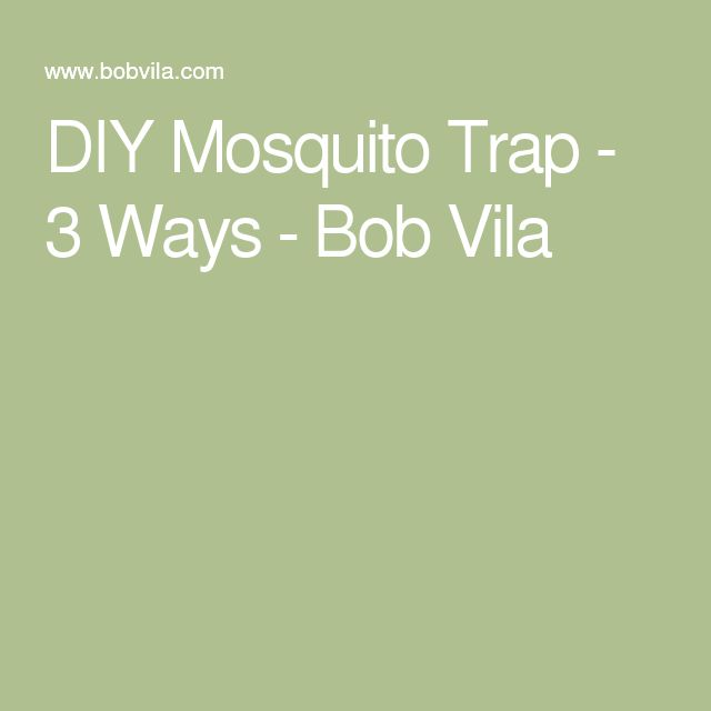DIY Mosquito Trap - 3 Ways - Bob Vila