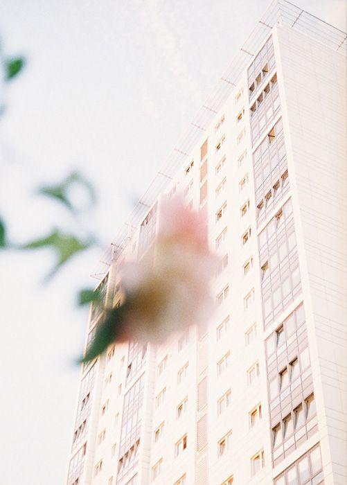 奥山由之作品 ©Yoshiyuki Okuyama