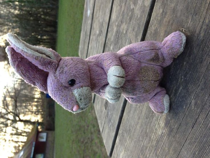 Found on 28 Feb. 2016 @ Manor farm country park, hampshire. Found this bunny in the Barnfield play area at Manor Farm Country Park, Hampshire. Didn't want to take it home in case the owner came back so left it sitting on the bench by the war memorial. Visit: https://whiteboomerang.com/lostteddy/msg/p5s80c (Posted by Abi on 28 Feb. 2016)