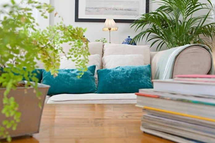 Residential plants which kill negative energy