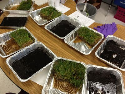 Easy erosion activity with sod and soil Flamingo Fabulous in Second Grade