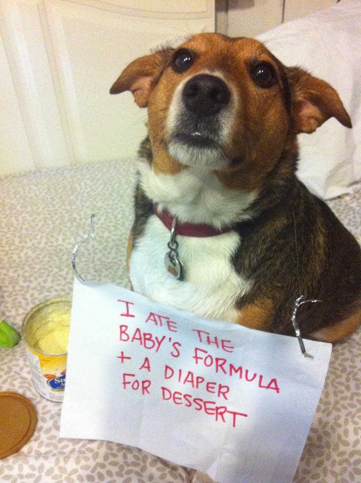 Yum Baby Formula & Diapers!
