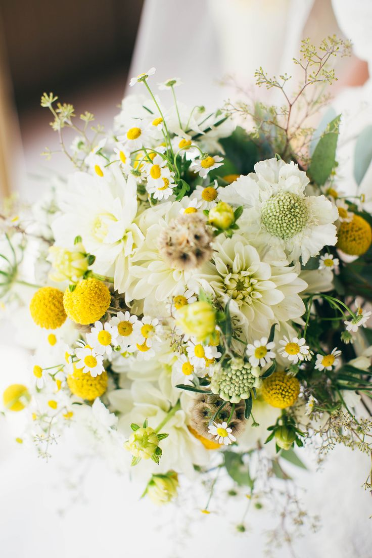Yellow and White Bouquet with Craspedia, Scabiosa and Daisies